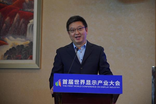 中国光学光电子行业协会液晶分会常务副秘书长胡春明:创新将为显示材料和装备带来更多机会