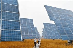 图为游客在江西新余市首座光伏发电生态主题公园内参观。