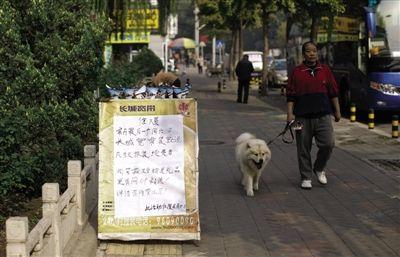 垂杨柳中街,宽带运营商将广告牌立在路边。新京报记者 周岗峰 摄